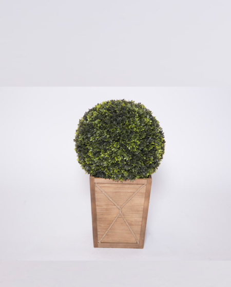 Short Round Topiary in Wood Base
