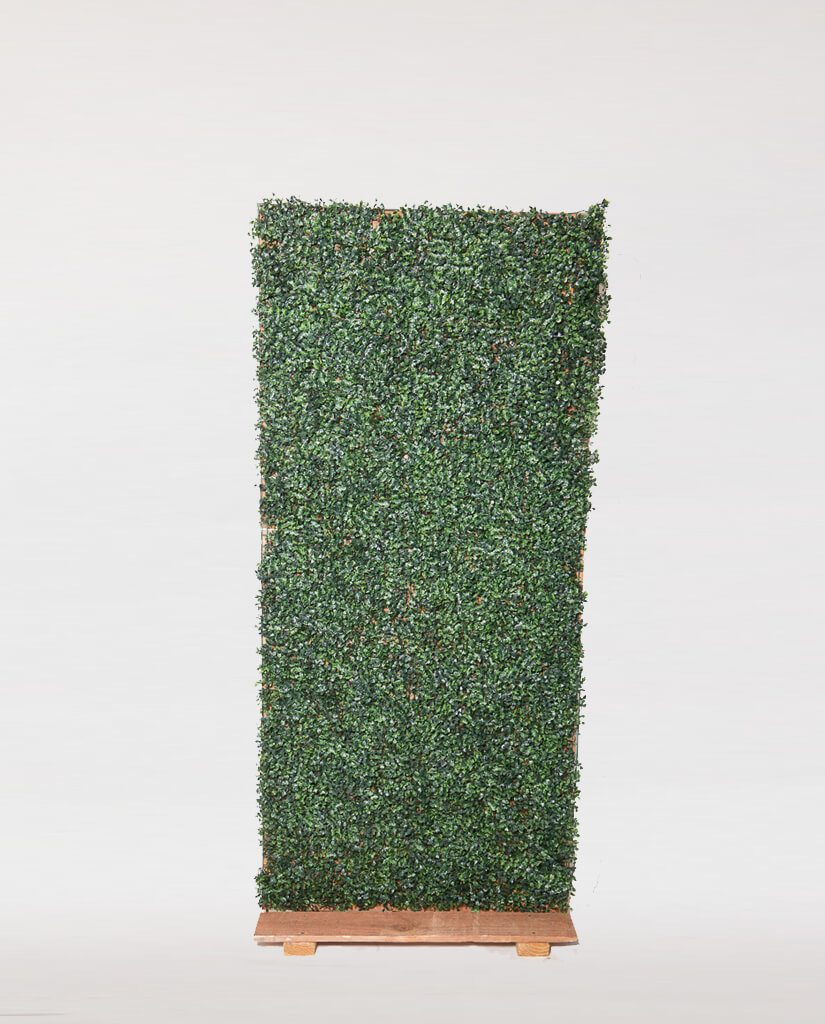 Grass Backdrop (8 ft wide x 6 ft tall)